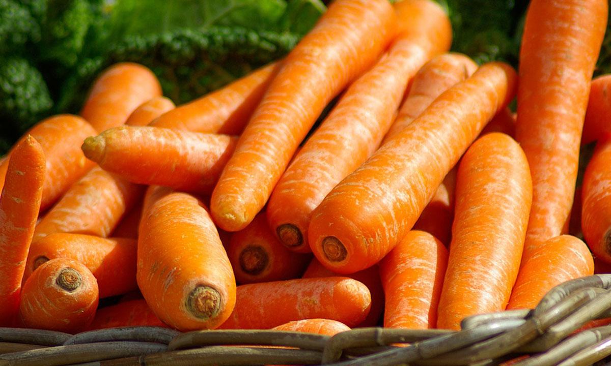 Beneficios de consumir zanahorias para nuestra salud